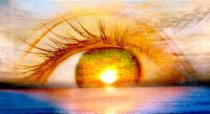 Eyes Transduction of light